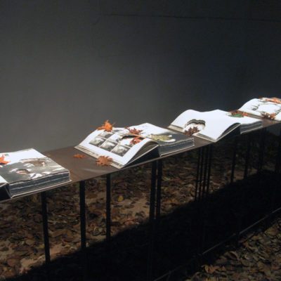 Il libro d'artista: aspetti progettuali, processi di realizzazione e figure professionali coinvolte